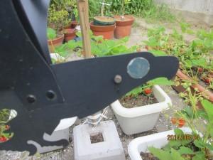 イチゴを守る猛禽類磁石つき