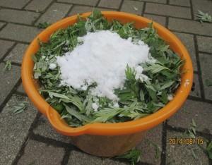 ヨモギと白砂糖を重ねていきます